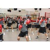 Виды школ бокса